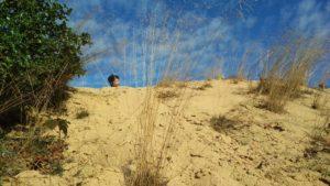 humanlike co sand dunes
